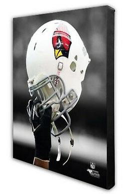 NFL Arizona Cardinals Beautiful Gallery Quality, High Resolu
